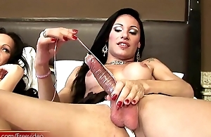 Shemale hotties are anal riding girl shafts at hand wild fuckfest
